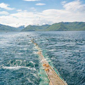 izettle ocean reader
