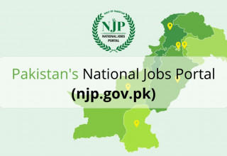 pakistan-national-jobs-portal-clarity-nitb-njp